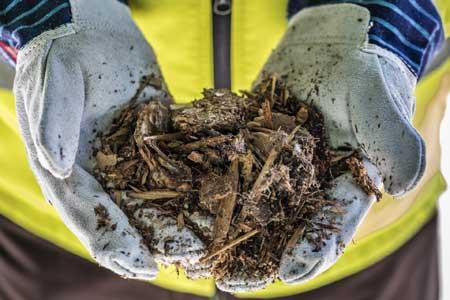 Holzhackschnitzel zur thermischen Verwertung